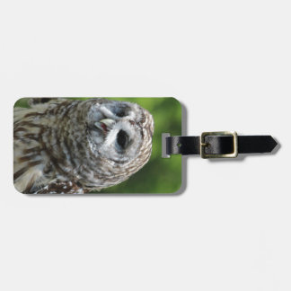 Barred Owl Luggage Tags