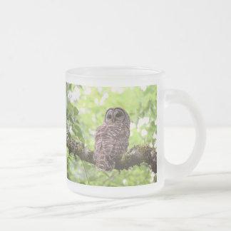 Barred Owl Mug