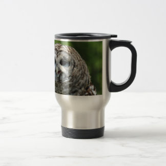 Barred Owl Mugs
