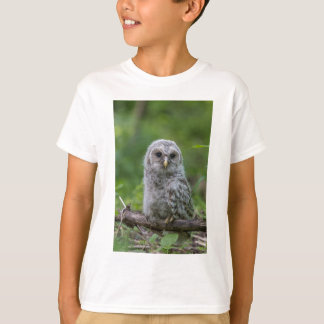 Barred Owl owlet T-Shirt