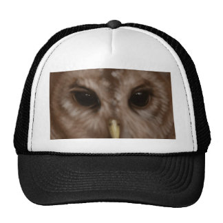 Barred owl painted art trucker hat