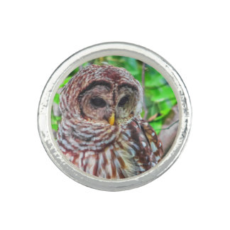 Barred Owl Ring