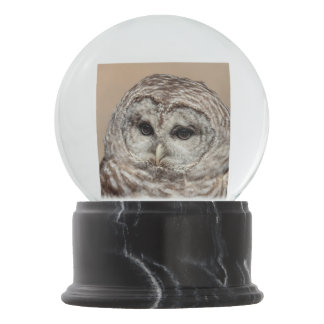 Barred Owl Snow Globe