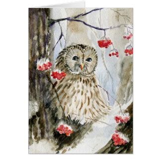 Barred owl snow winter card