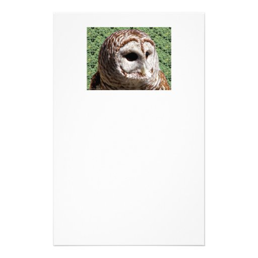 Barred Owl Personalized Stationery