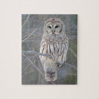 Barred Owl Strix Varia Jigsaw Puzzle