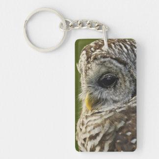 Barred Owl, Strix varia, Michigan Double-Sided Rectangular Acrylic Key Ring