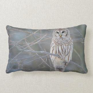 Barred Owl Strix Varia Throw Cushion