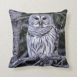 Barred Owl Throw Cushion