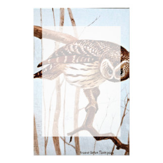 Barred Owl Vintage Wildlife Illustration Stationery