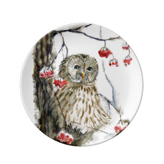 Barred Owl watercolor painting Porcelain Plates