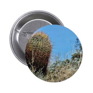 Barrel Cactus A Cactus In Anza Borrego Desert Cact Pin