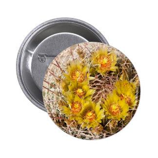Barrel Cactus Pinback Button