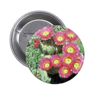 Barrel Cactus Pins