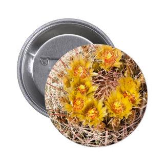 Barrel Cactus Button