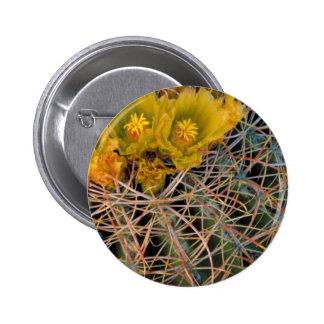 Barrel cactus buttons