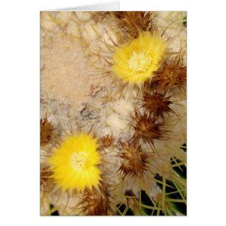 Barrel Cactus Blossoms Greeting Card