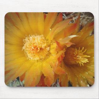 Barrel Cactus Blossoms Mouse Pad