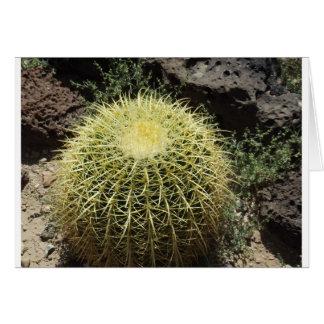 Barrel Cactus Greeting Cards