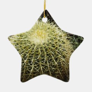 Barrel Cactus Ceramic Star Decoration