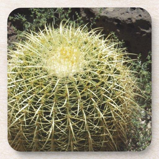 Barrel Cactus Beverage Coaster