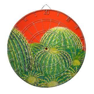 Barrel Cactus Dartboard With Darts