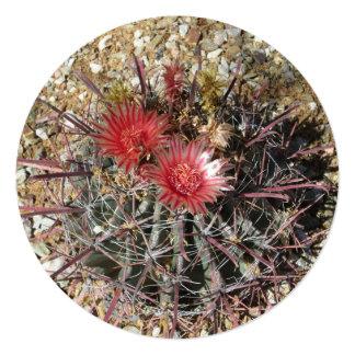Barrel Cactus Fishhook Red 13 Cm X 13 Cm Square Invitation Card