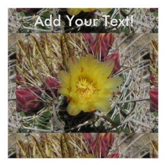 Barrel Cactus Fishhook Yellow Poster