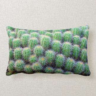 barrel cactus green pillow