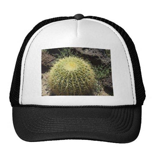 Barrel Cactus Trucker Hat