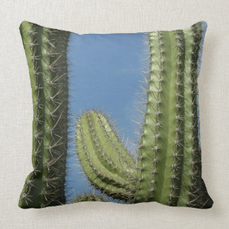 Barrel Cactus I Desert Nature Photo Cushion
