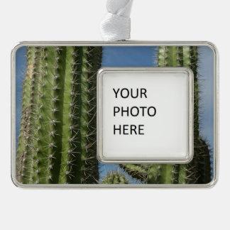 Barrel Cactus I Desert Nature Photo Silver Plated Framed Ornament