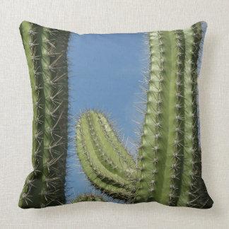 Barrel Cactus I Desert Nature Photo Throw Pillow