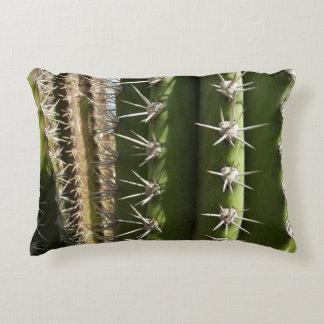 Barrel Cactus II Desert Nature Photo Decorative Cushion