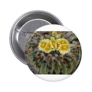 Barrel Cactus in Bloom Pinback Button