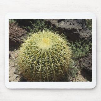 Barrel Cactus Mouse Pad