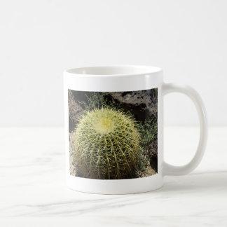 Barrel Cactus Mugs