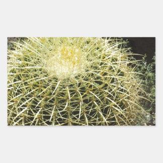 Barrel Cactus Rectangular Sticker