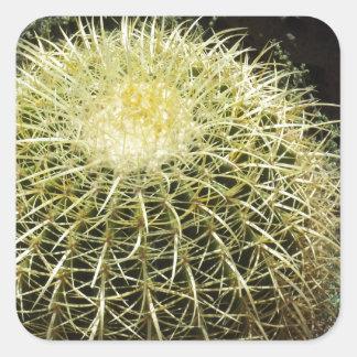 Barrel Cactus Stickers