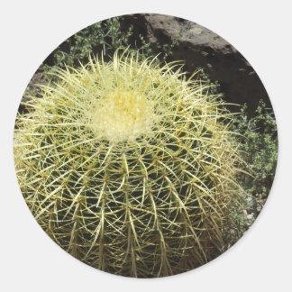 Barrel Cactus Round Sticker