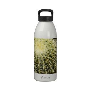 Barrel Cactus Water Bottle