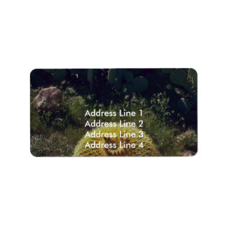 Barrel Cactus With Brothers Address Label