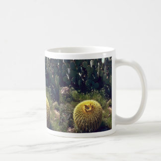 Barrel Cactus With Brothers Mugs