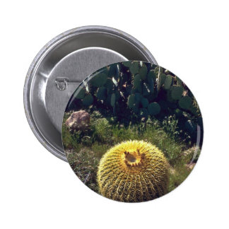 Barrel Cactus With Brothers Pinback Buttons