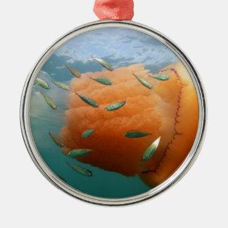 Barrel Jellyfish Swims With Mackerel Metal Ornament