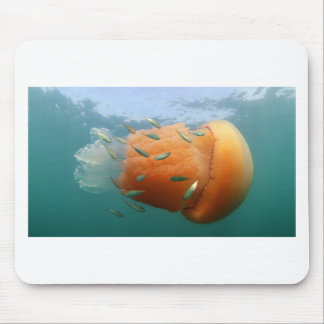 Barrel Jellyfish Swims With Mackerel Mouse Pad
