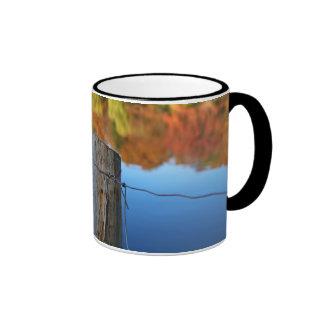 barrier to beauty mug
