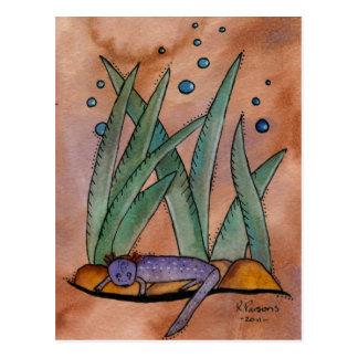 Barton Springs Salamander Postcard