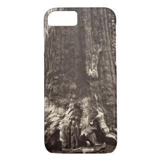 Base of the Grizzly Giant, from 'The Yosemite Book iPhone 7 Case