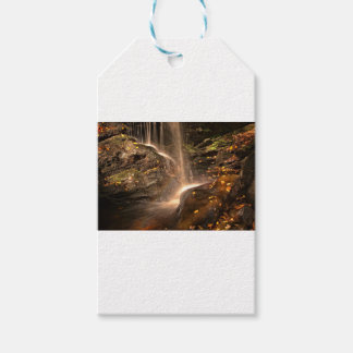 Base of Trap Falls in Autumn Gift Tags